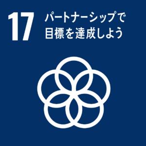 目標 17. 持続可能な開発のための実施手段を強化し、グローバル・パートナーシップを活性化する
